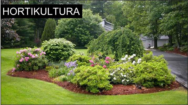 hortikultura-uredenje-vrta-dvorista-okucnica